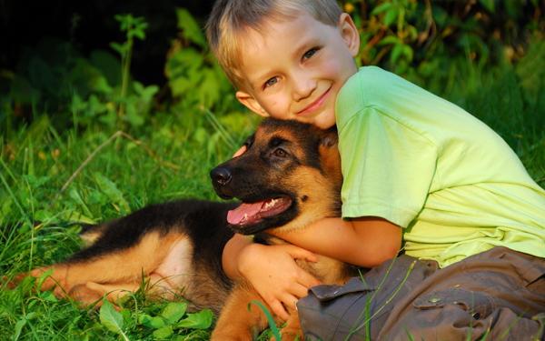 Влияние собак на детей